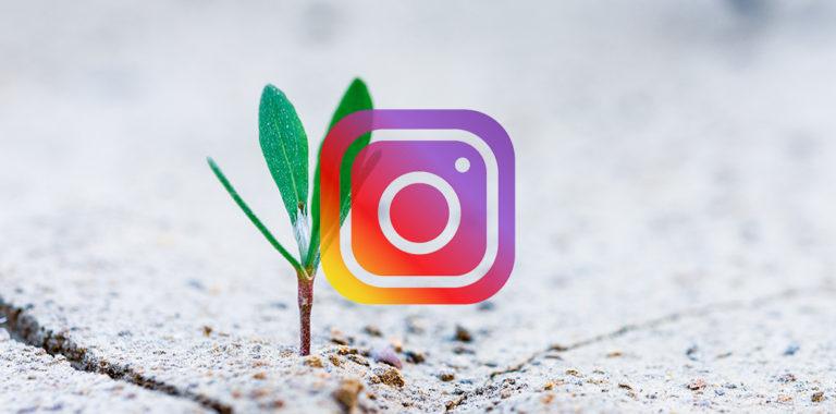 Best 18 Instagram Growth Services