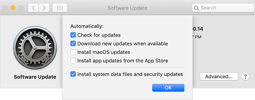 Mac Automatic Updates